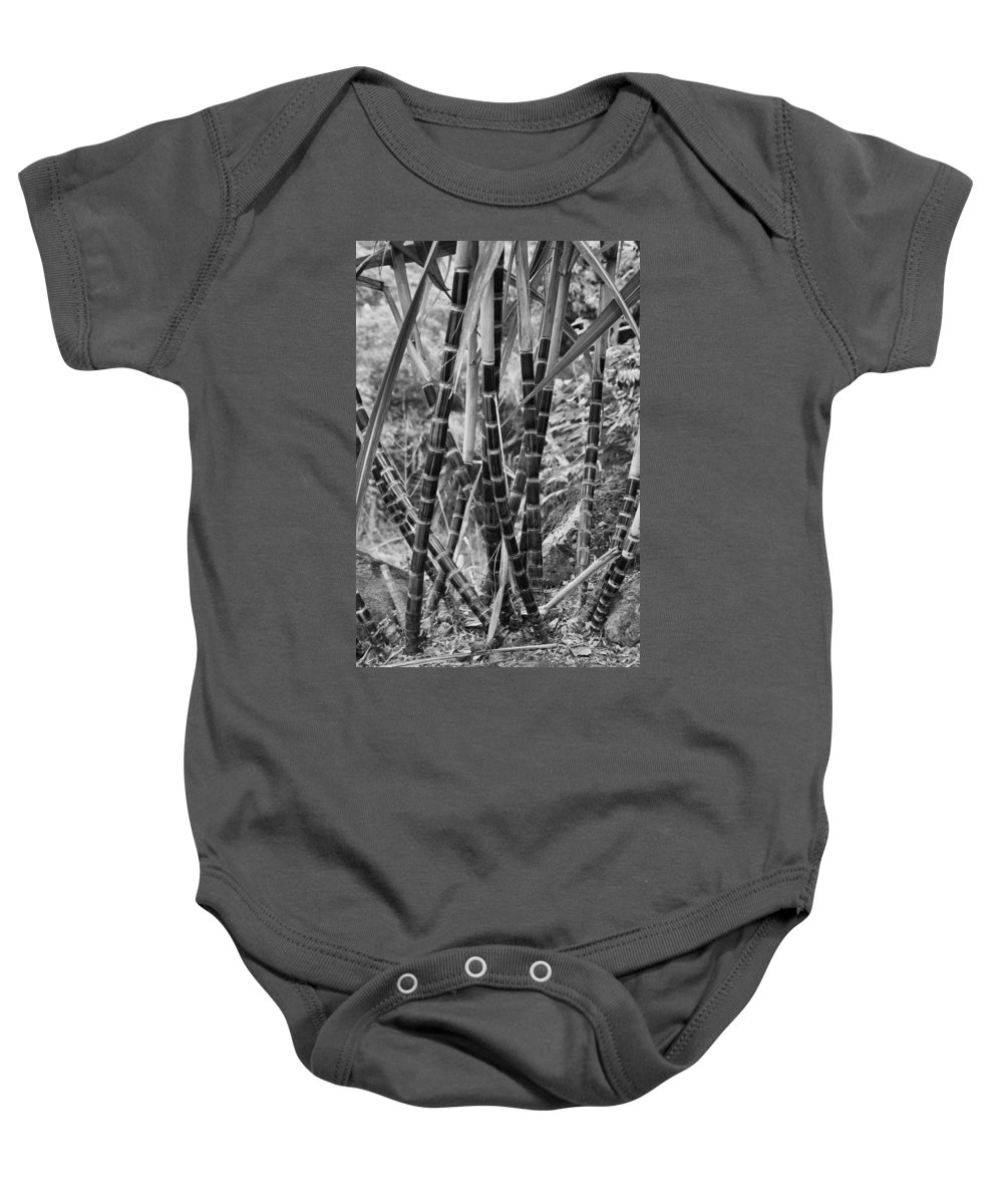 Bamboo Baby Onesie featuring the photograph Bamboo-waimea Arboretum by Douglas Barnard