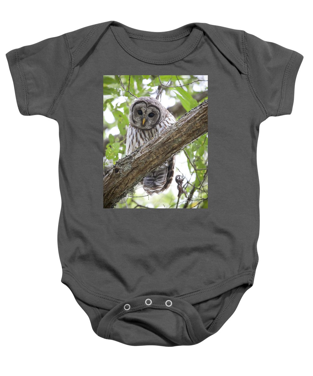 Barred Owl Baby Onesie featuring the photograph Barred Owl by Chris Dutton