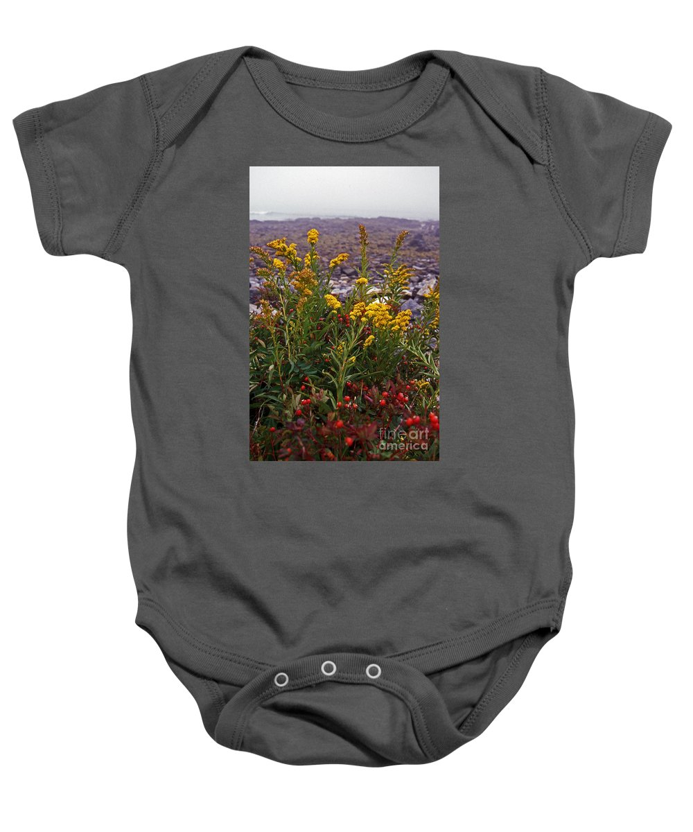 Maritime Baby Onesie featuring the photograph Beachside Sunshine by Skip Willits