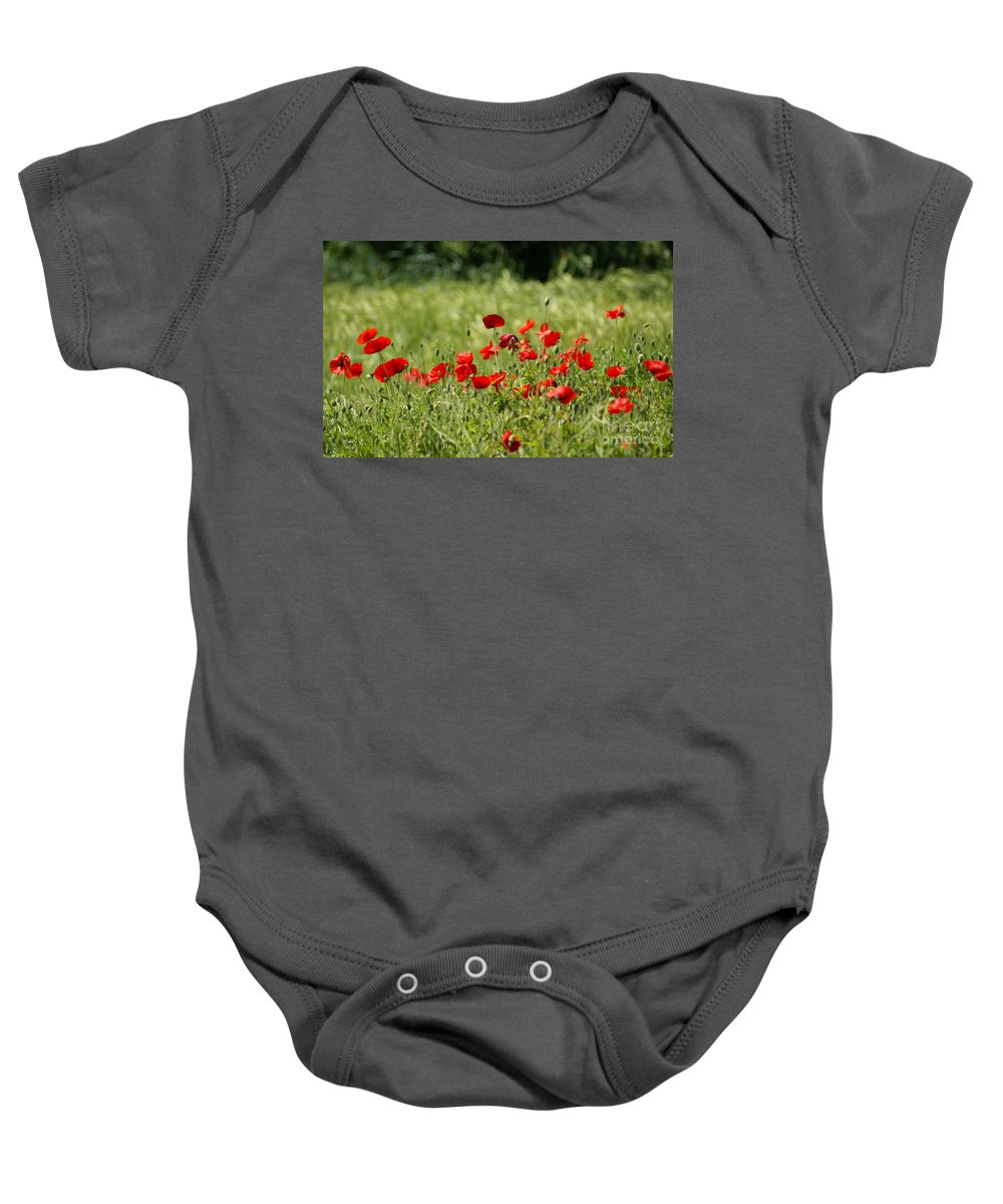 Poppies Baby Onesie featuring the photograph Beautiful Poppies 1 by Carol Lynch