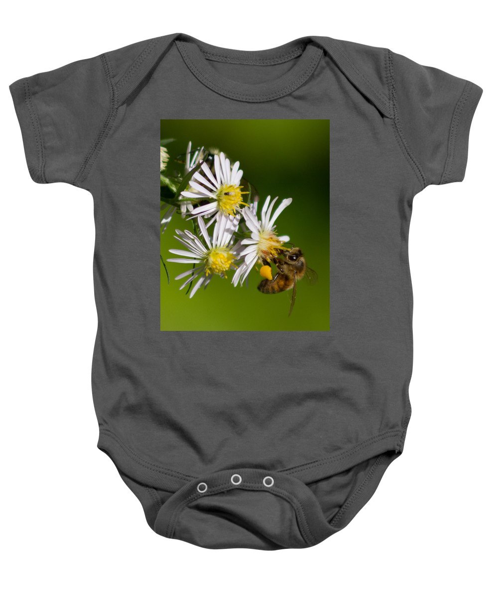 Insects Baby Onesie featuring the photograph Bee Harvest by Frank Pietlock