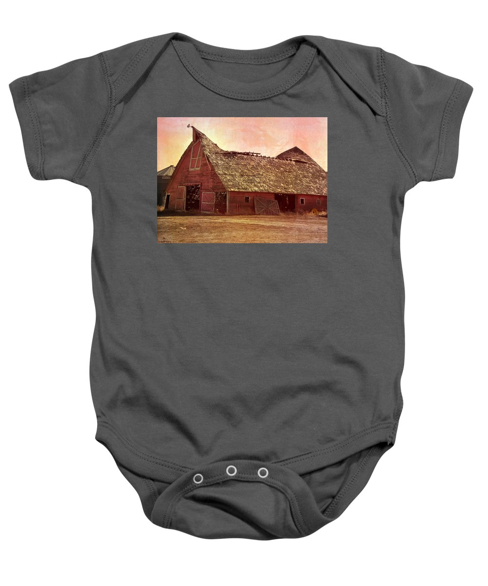 Barn Baby Onesie featuring the photograph Better Days by Image Takers Photography LLC - Carol haddon