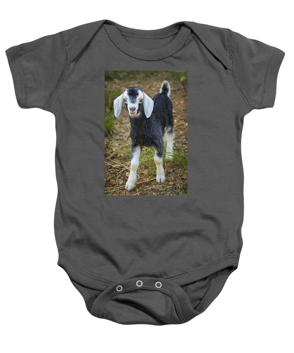 Goat Baby Onesie featuring the photograph Billy The Kid by Jack Milchanowski