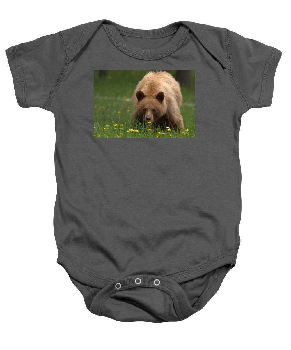 Bear Baby Onesie featuring the photograph Black Bear by Frank Madia