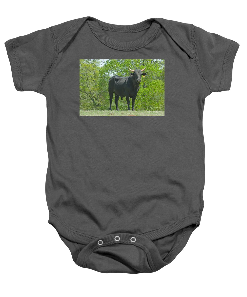 Animal Baby Onesie featuring the photograph Black Bull by Donna Brown