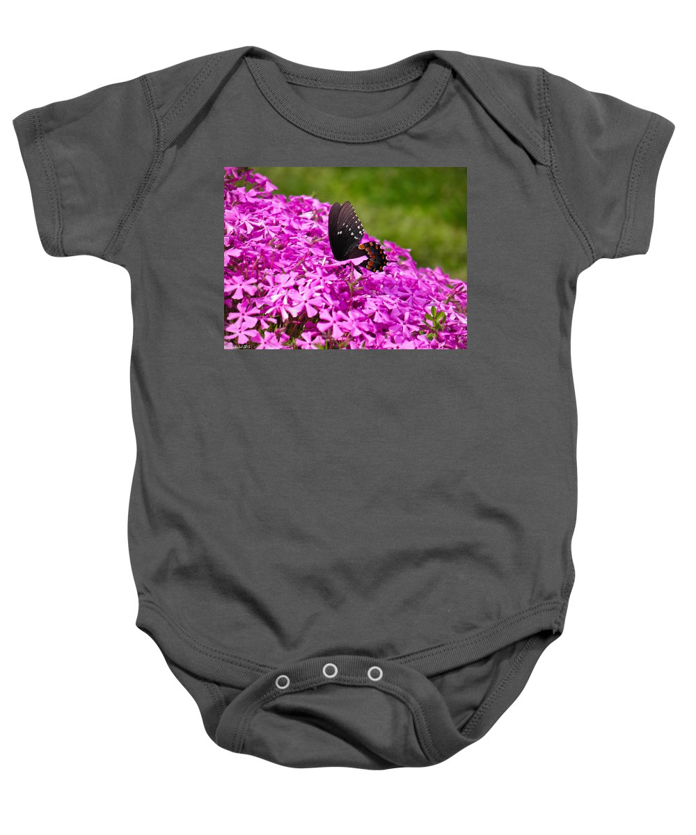 Butterfly Baby Onesie featuring the photograph Black Butterfly by Nick Kirby