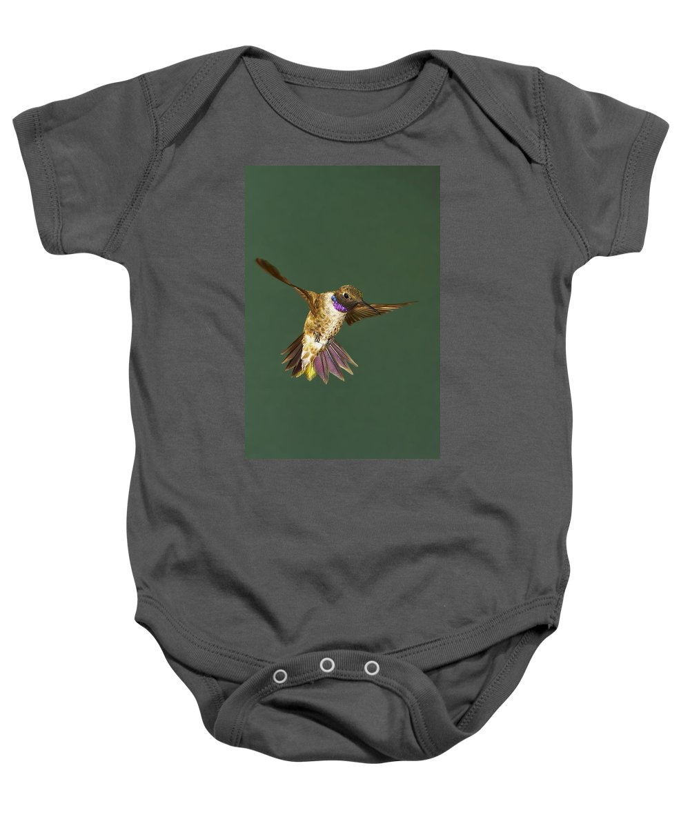 Action Baby Onesie featuring the photograph Black-chinned by Jack Milchanowski
