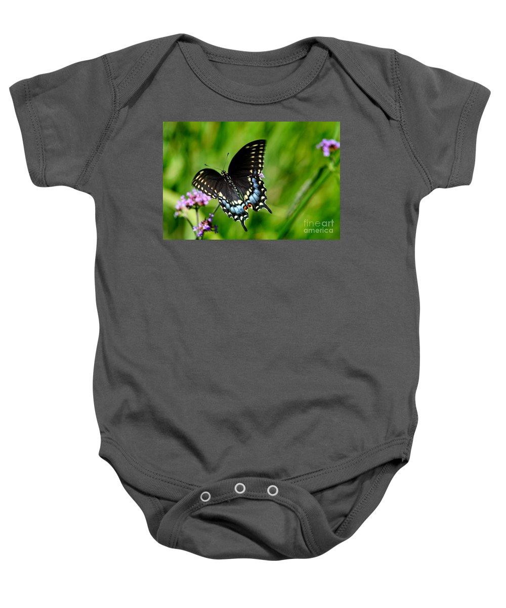 Butterfly Baby Onesie featuring the photograph Black Swallowtail Butterfly In Garden by Karen Adams