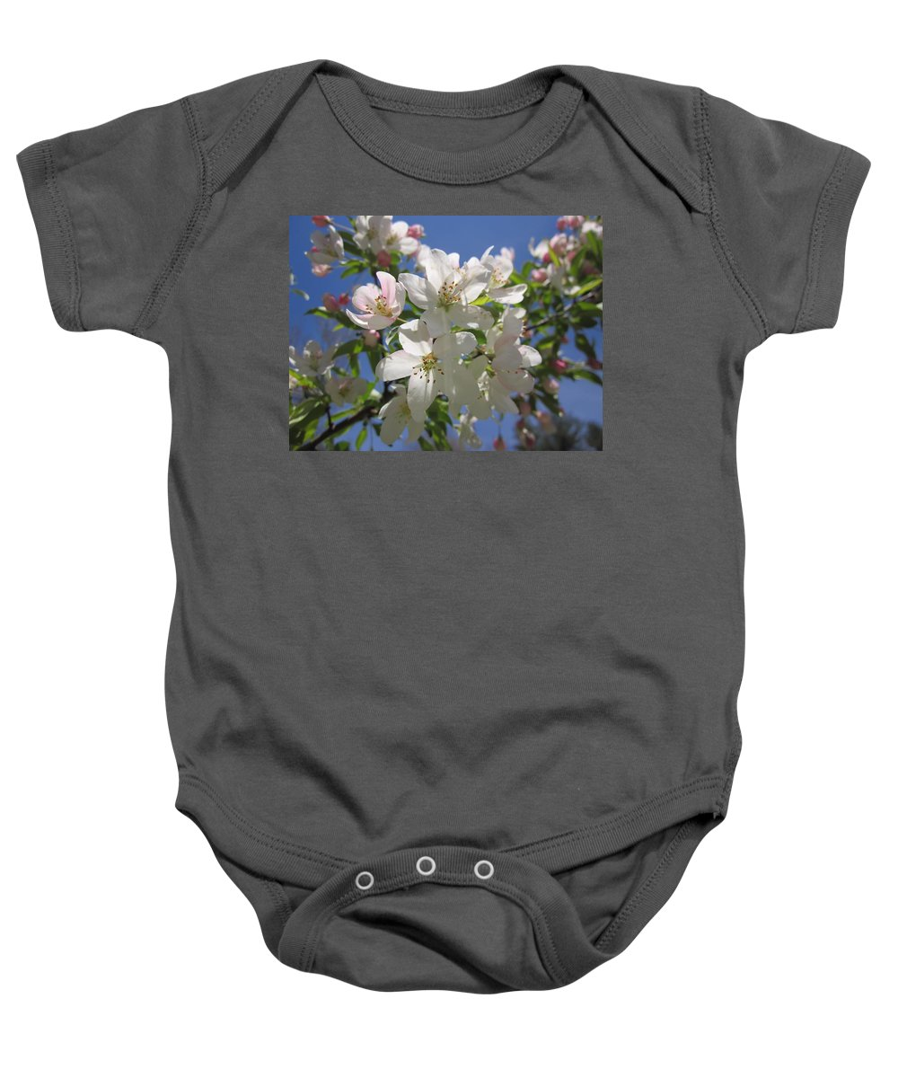 Crabapple Tree Blossoms Baby Onesie featuring the photograph Blossoms On Blue by MTBobbins Photography