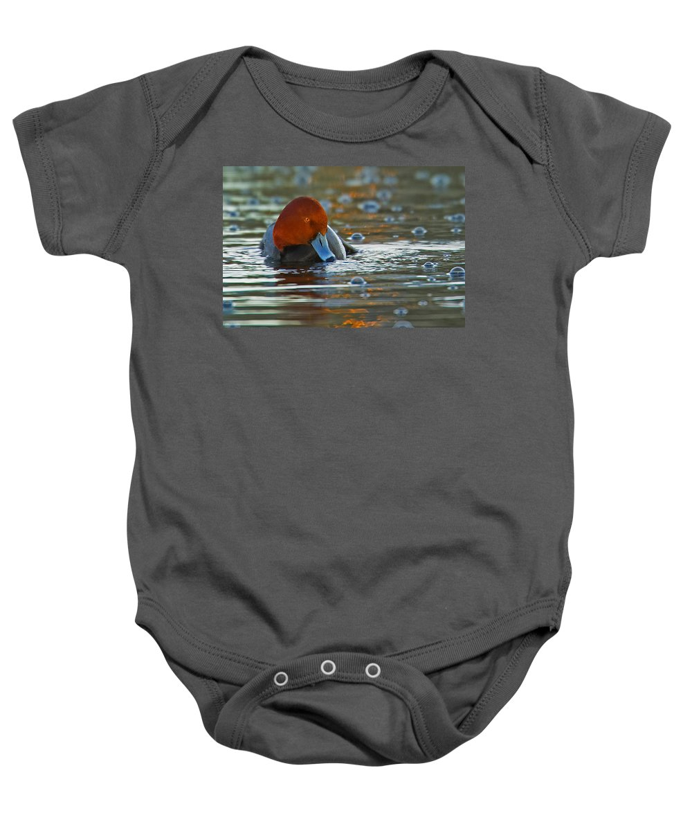 Water Baby Onesie featuring the photograph Blowing Bubbles by Jack Milchanowski