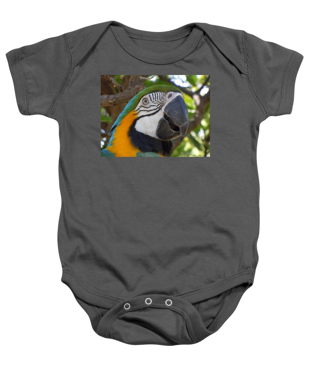 Blue-and-yellow Macaw Baby Onesie featuring the photograph Blue And Gold Macaw by Heather Coen