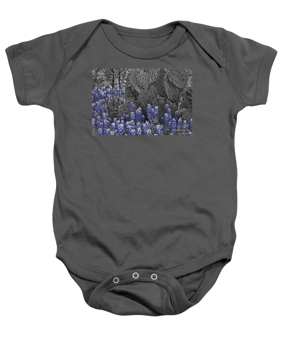 Wildflowers Baby Onesie featuring the photograph Blue Bonnet Cactus by Douglas Barnard