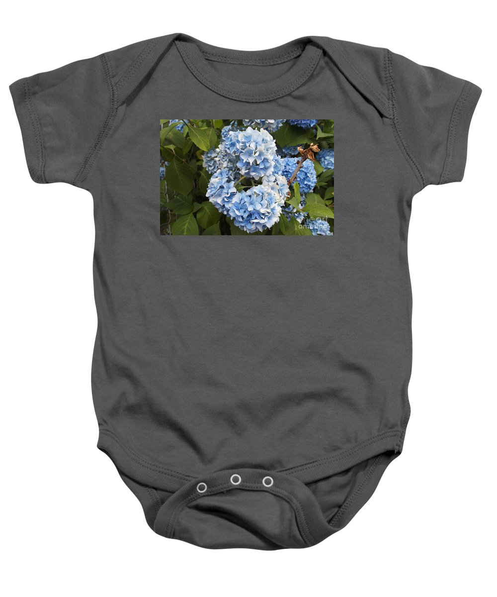 Flower Baby Onesie featuring the photograph Blue Circle by William Norton