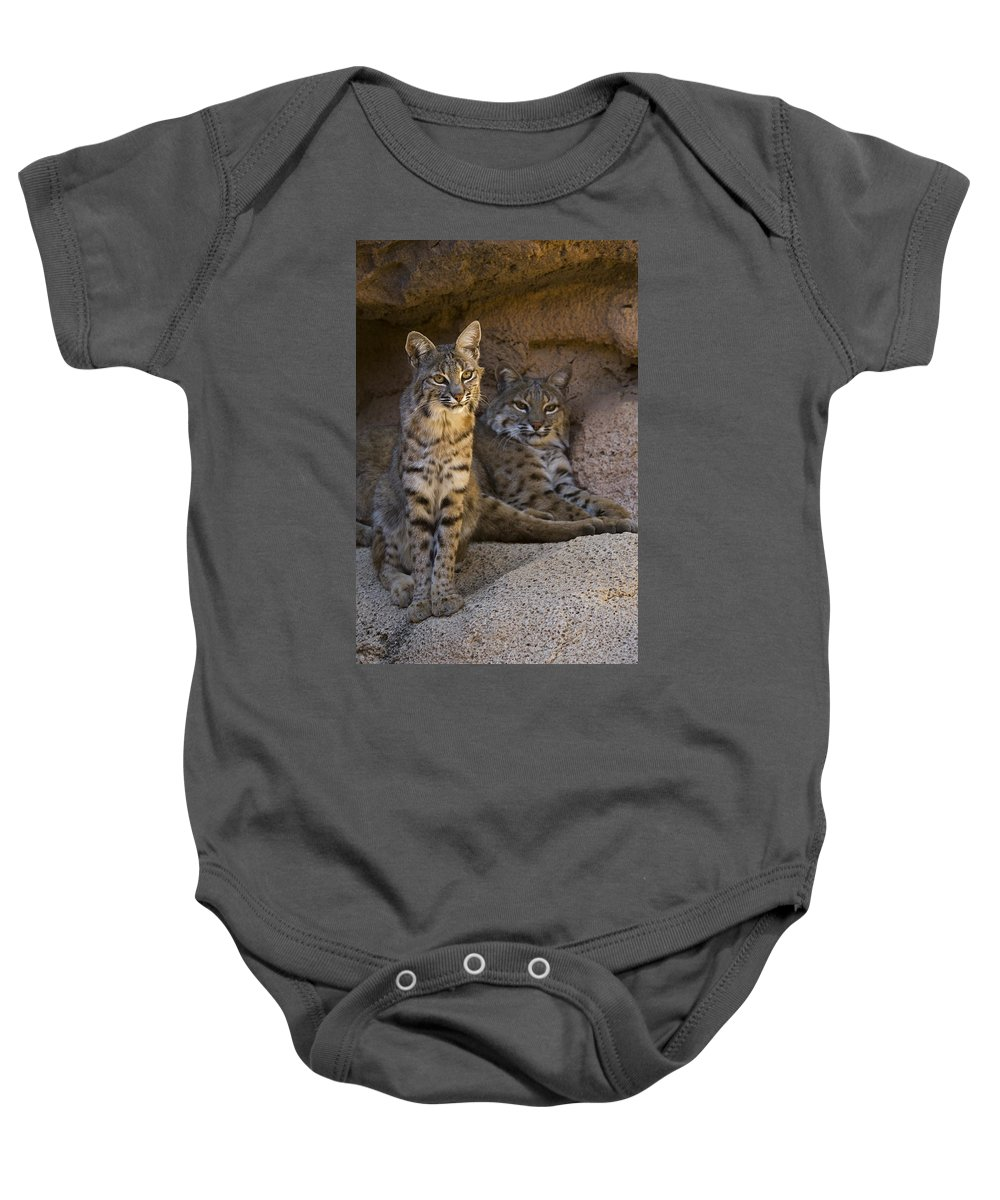 Two Baby Onesie featuring the photograph Bobcat 8 by Arterra Picture Library