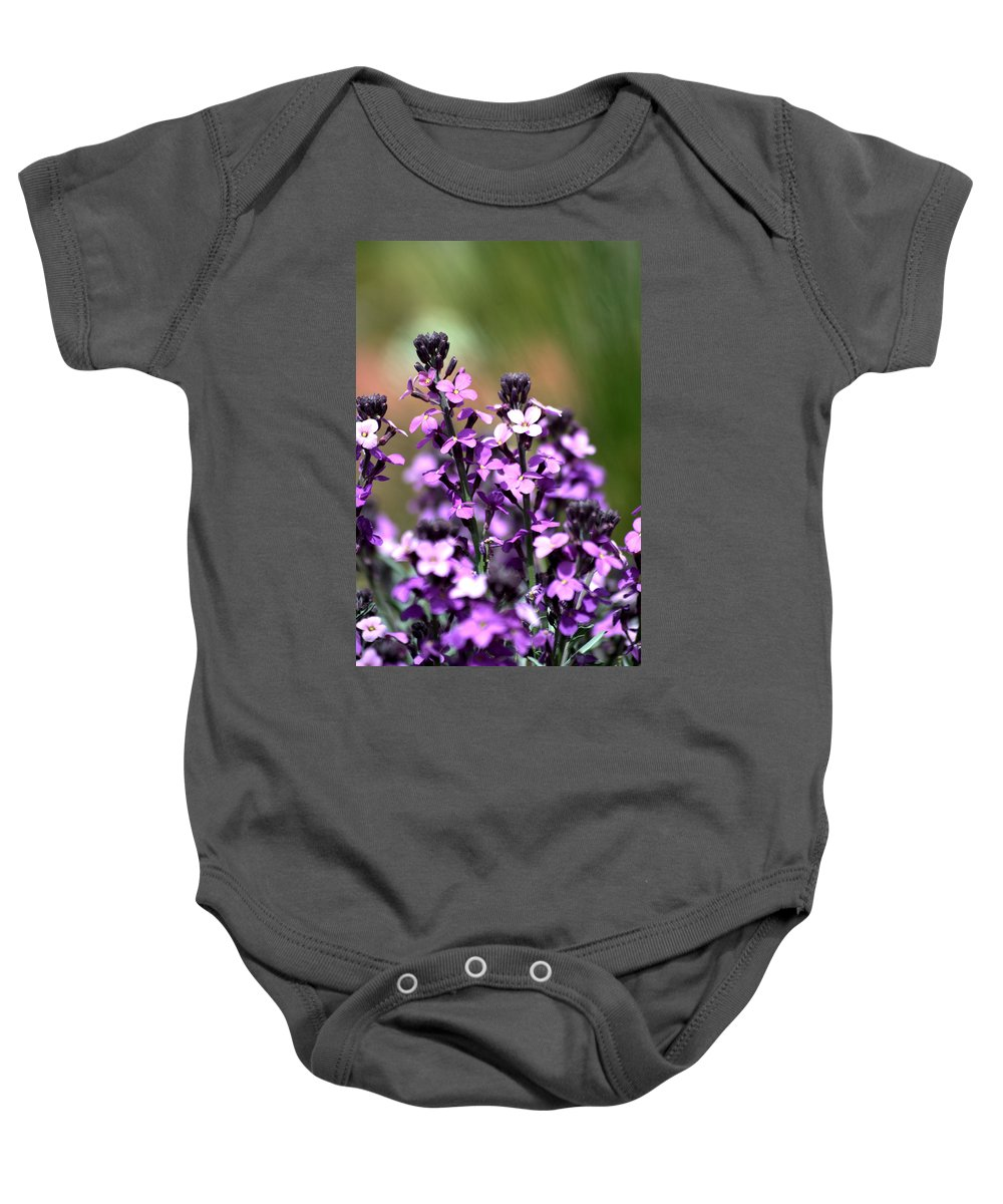 Bowles Mauve Baby Onesie featuring the photograph Bowles Mauve by Chris Giese