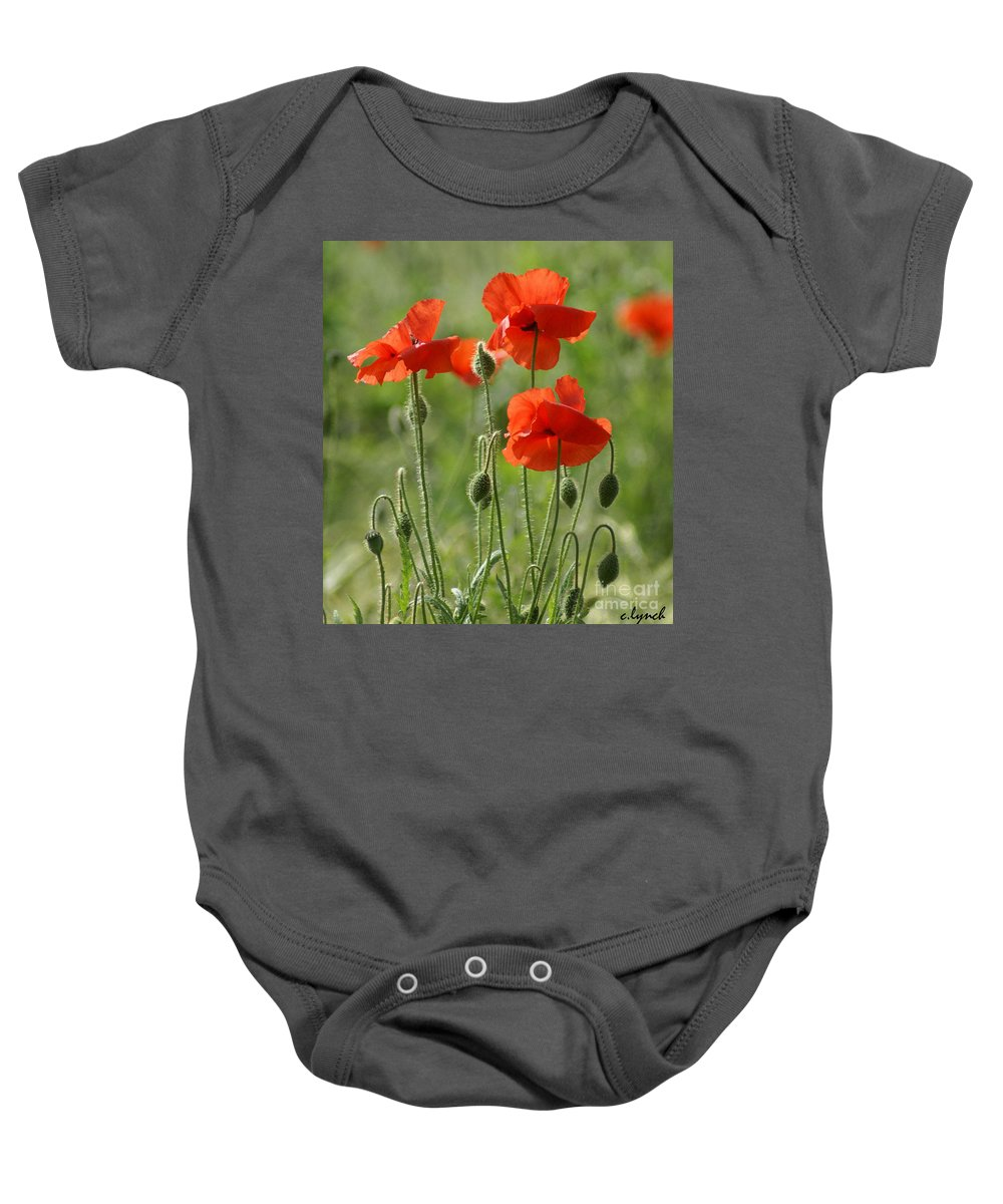 Poppies Baby Onesie featuring the photograph Bright Poppies 2 by Carol Lynch