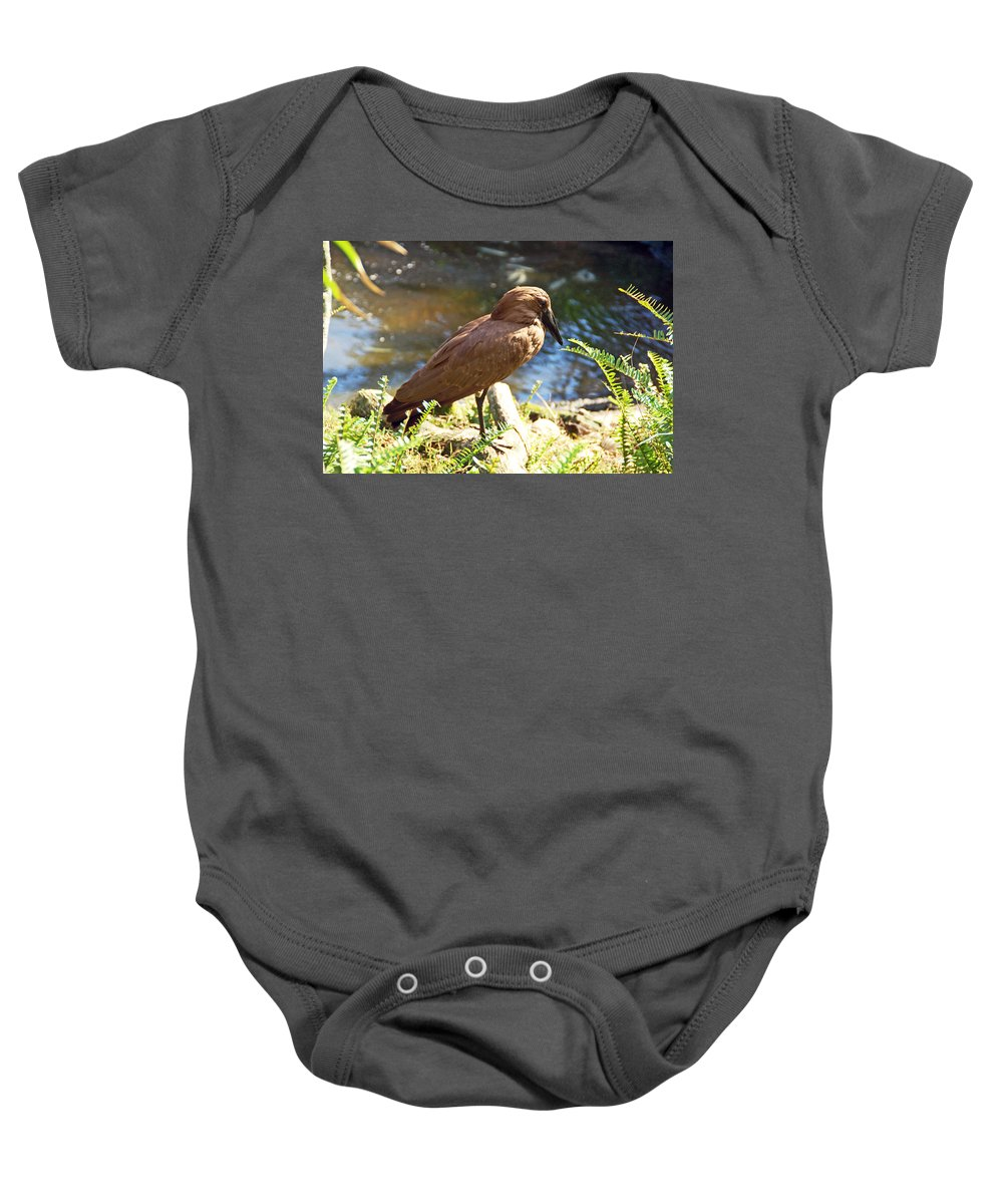 Bird Baby Onesie featuring the photograph Brown Bird by Aimee L Maher ALM GALLERY