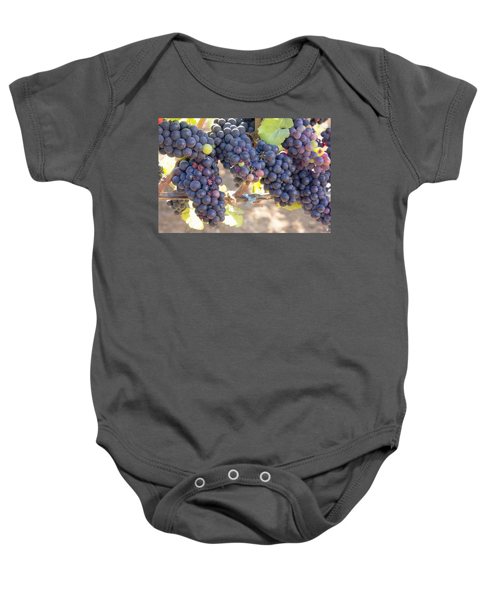 Grapes Baby Onesie featuring the photograph Bunches Of Red Wine Grapes by Jit Lim