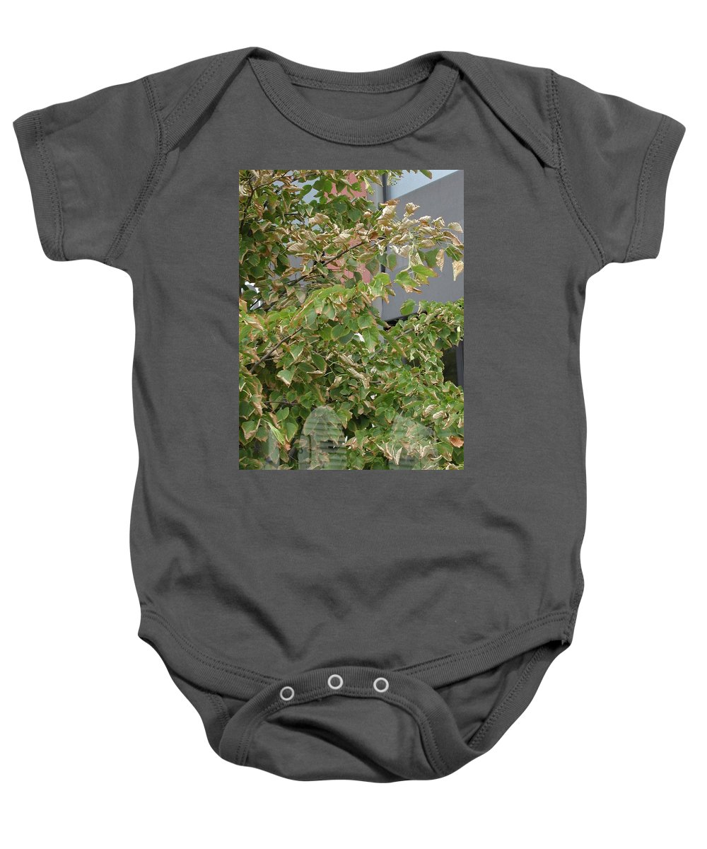 Brown Leaves Baby Onesie featuring the photograph Burnet Tree by Joseph Yarbrough