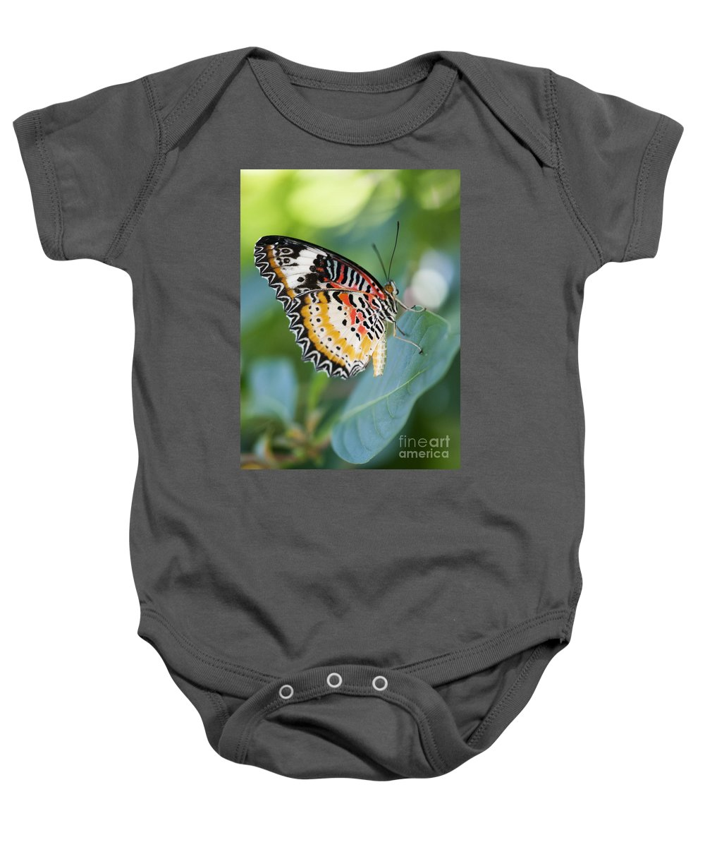 Farfalla Baby Onesie featuring the photograph Butterfly Dreams by Juli Scalzi