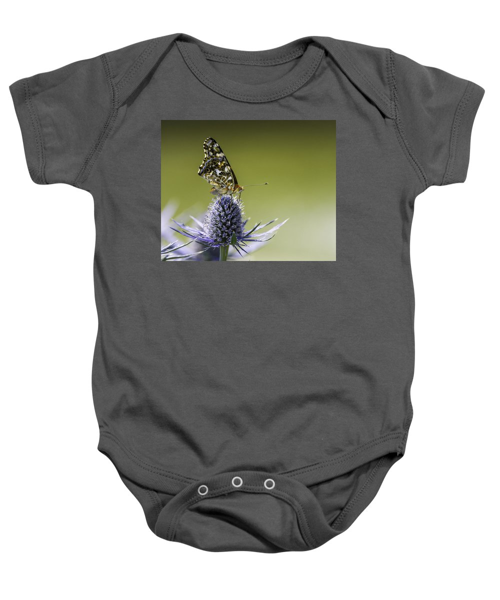 Butterfly On Purple Thistle Baby Onesie featuring the photograph Butterfly On Thistle by Peter v Quenter