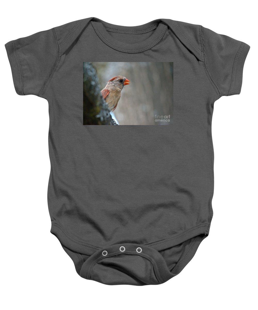 Cardinal Baby Onesie featuring the photograph Cardinal Eye by Cheryl Baxter