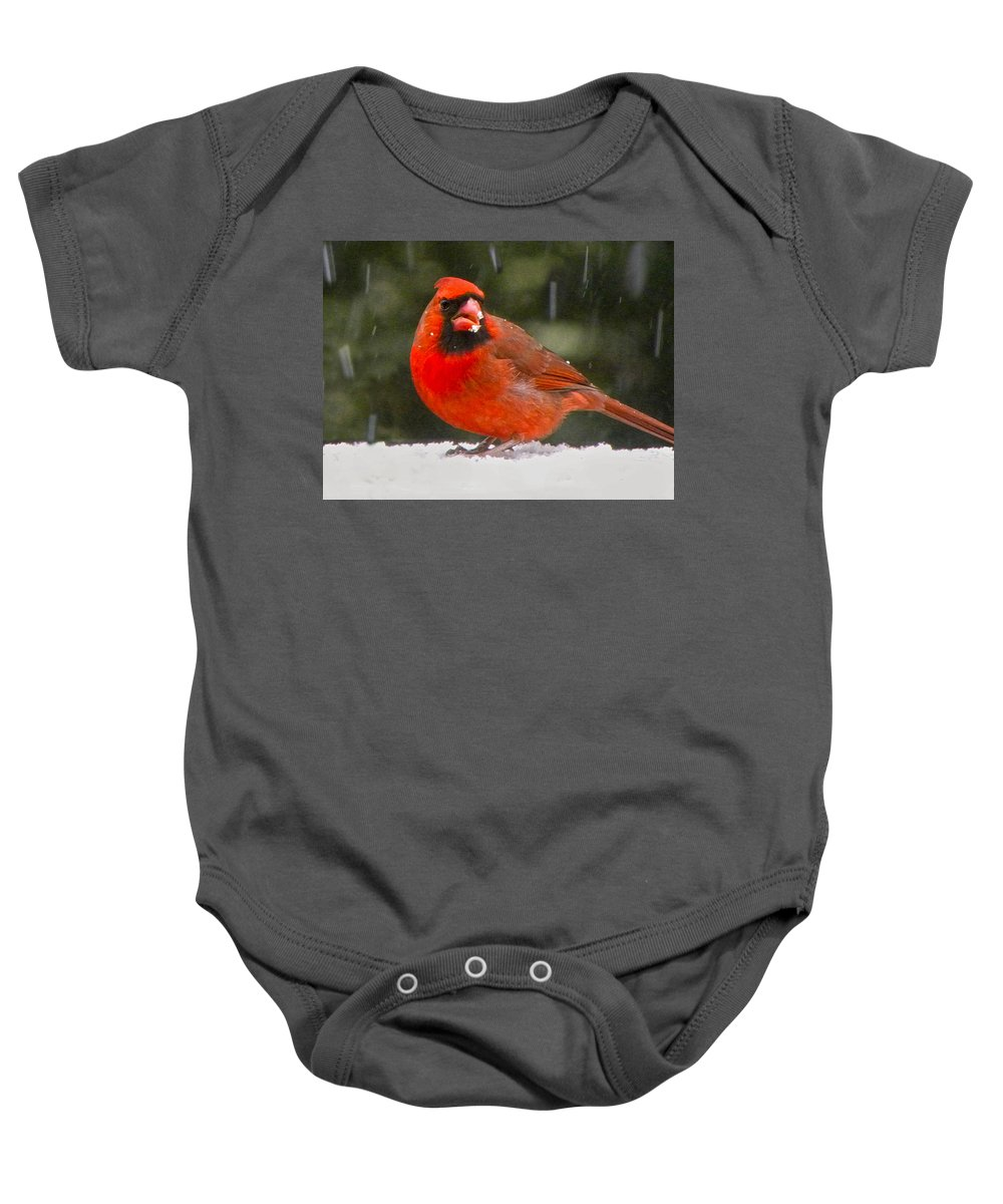 Northern Cardinal Baby Onesie featuring the photograph Cardinal In The Snowstorm by Sandi OReilly