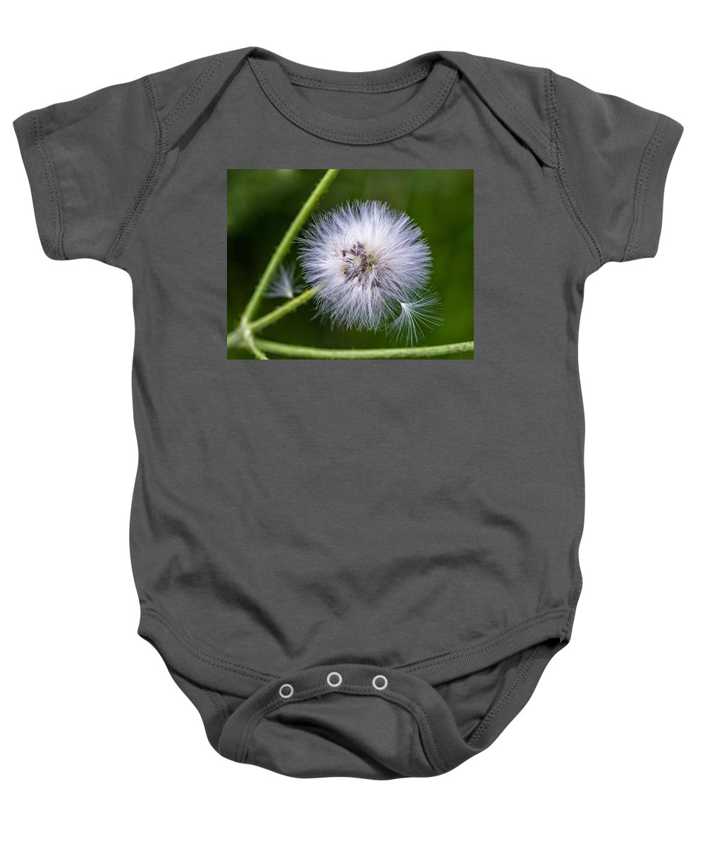 Flower Baby Onesie featuring the photograph Cast Your Fate To The Wind by Steve Harrington