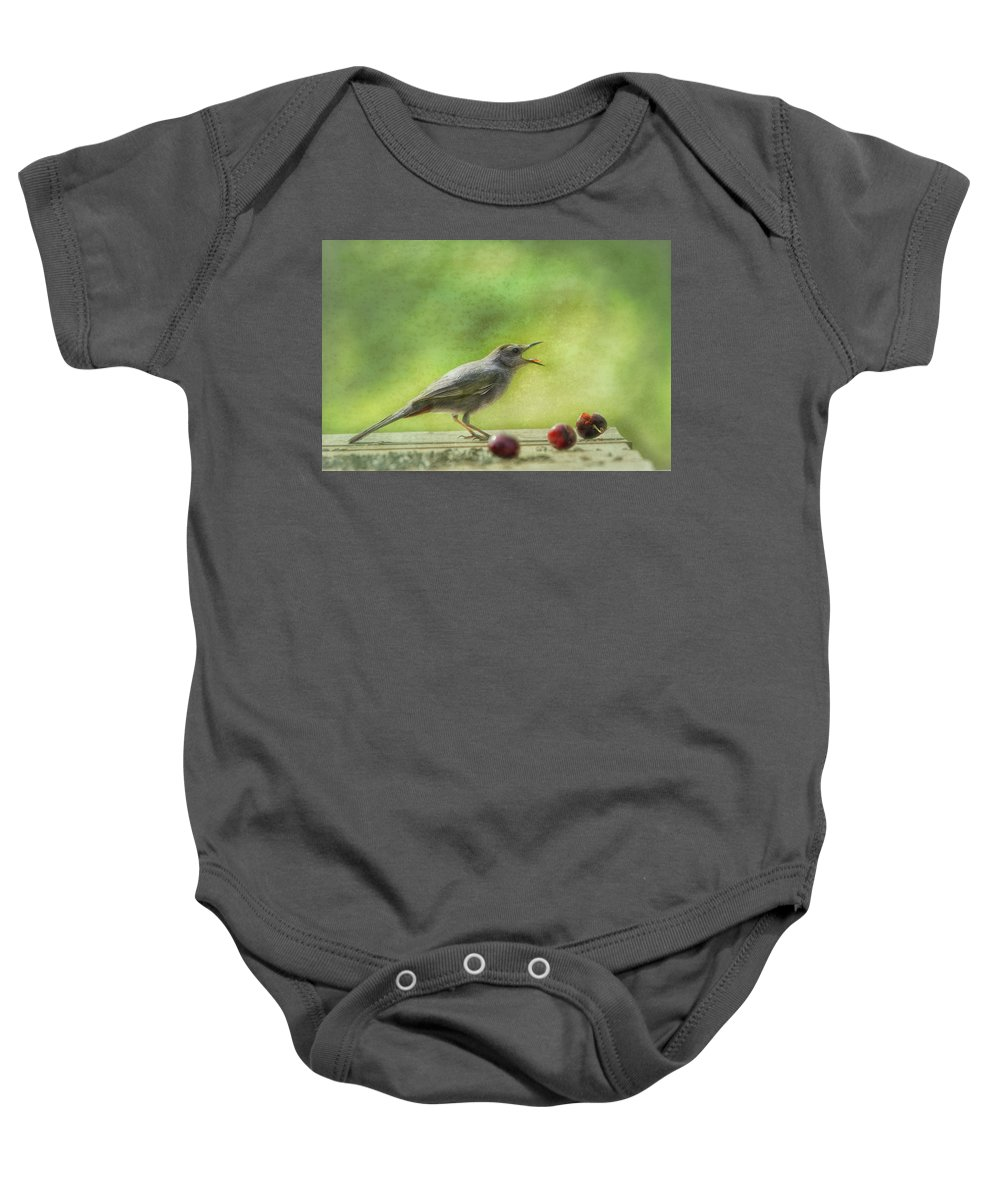 Catbird Baby Onesie featuring the photograph Catbird Eating Cherries by Susan Capuano