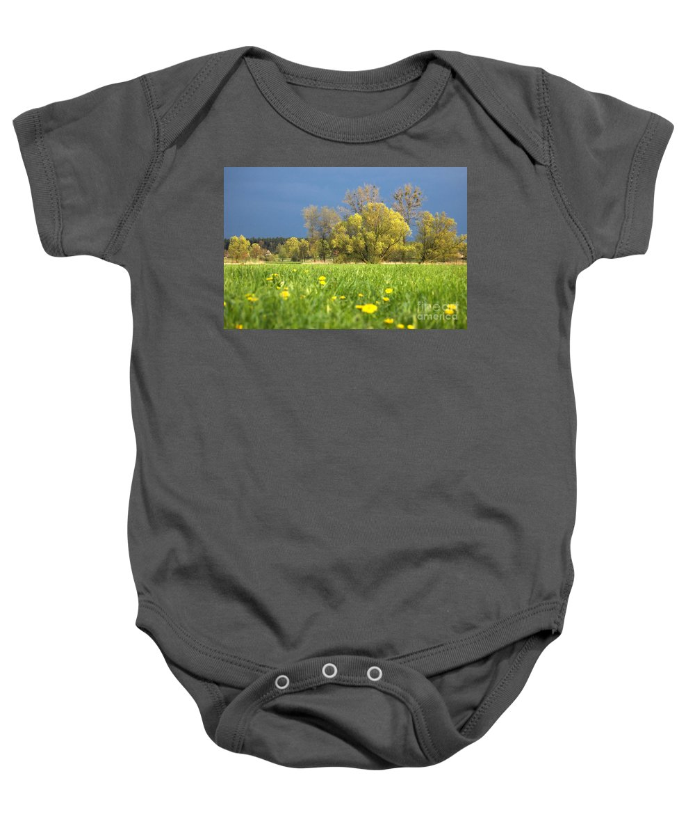 Blue Baby Onesie featuring the photograph Charming View by Michal Bednarek