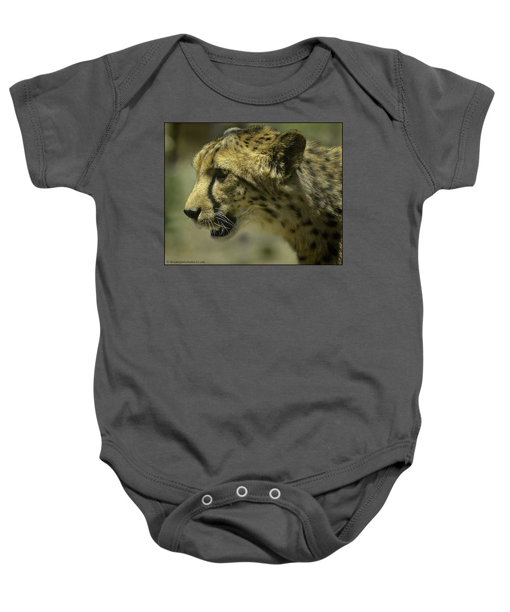 Cheetah Baby Onesie featuring the photograph Cheetah On The Prowl by LeeAnn McLaneGoetz McLaneGoetzStudioLLCcom