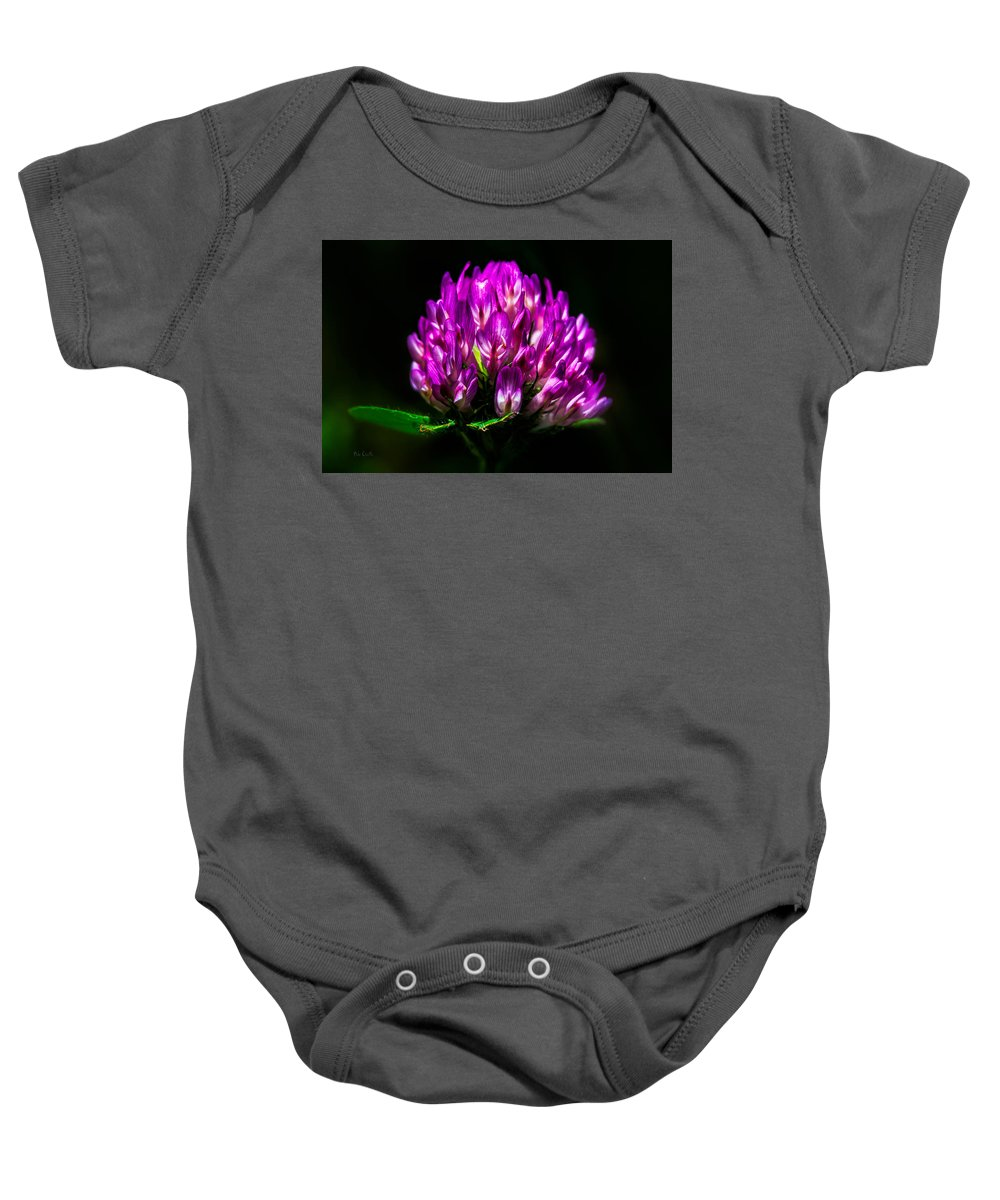 Clover Baby Onesie featuring the photograph Clover Flower by Bob Orsillo