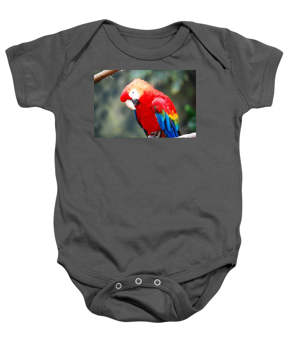 Baby Onesie featuring the photograph Coat Of Many Colors by Kim Blaylock