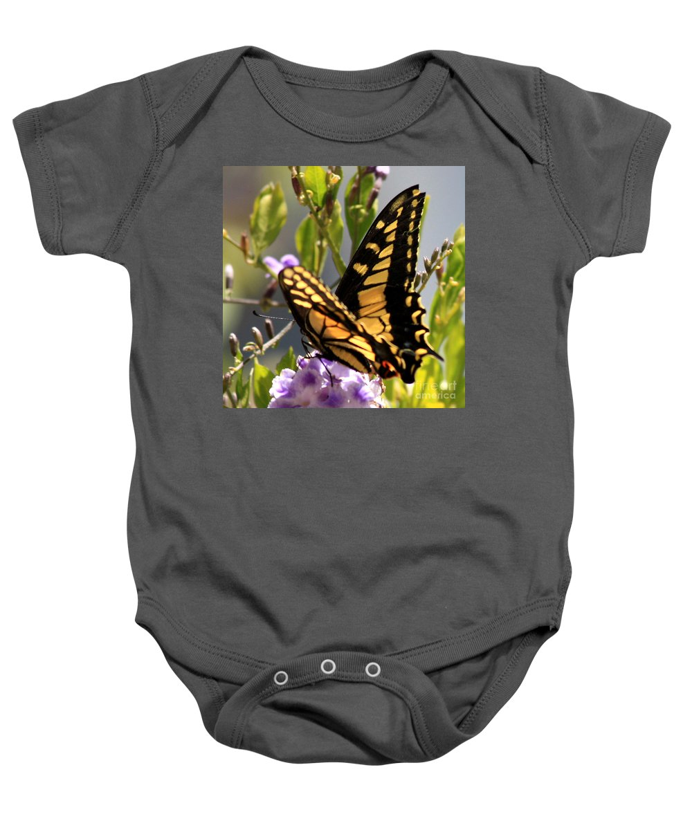 Butterfly Baby Onesie featuring the photograph Colorful Butterfly Square by Carol Groenen