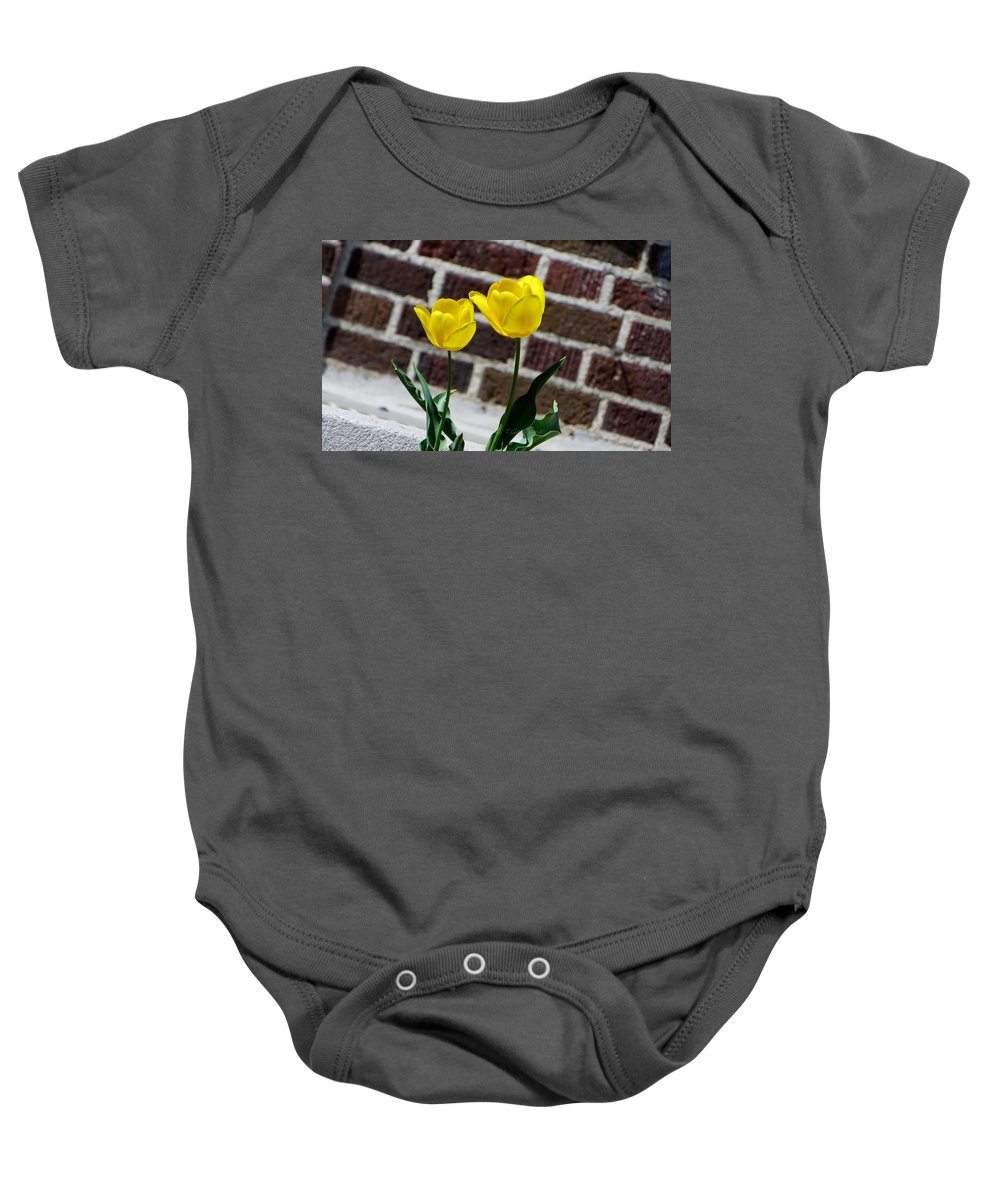 Tulips Baby Onesie featuring the photograph Colour Wheel Yellow by Sonali Gangane