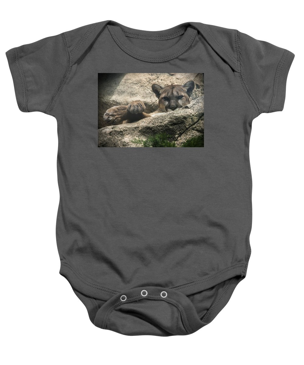 Cougar Baby Onesie featuring the photograph Cougar Spotted Me by Jayne Gohr