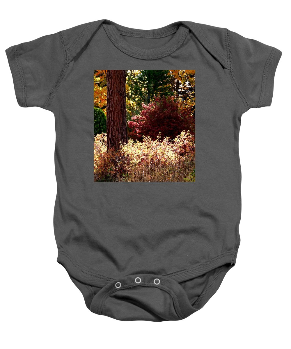 Autumn Baby Onesie featuring the digital art Country Color 28 by Will Borden
