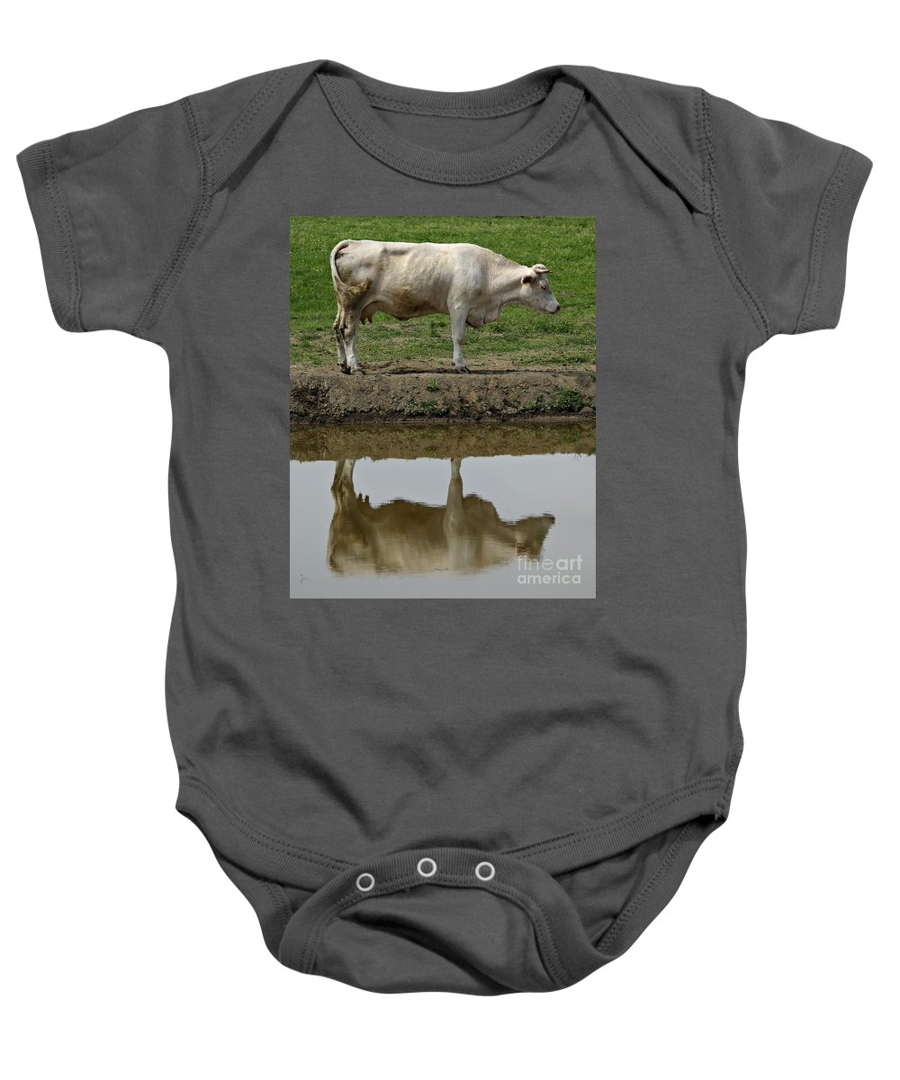Livestock Baby Onesie featuring the photograph Cow by Zoran Berdjan