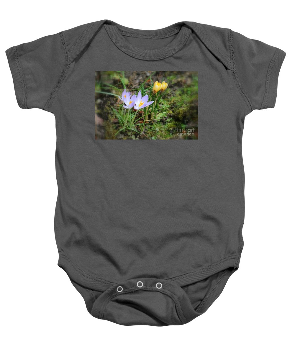 Crocuses Baby Onesie featuring the photograph Crocuses In Bloom by Leone Lund