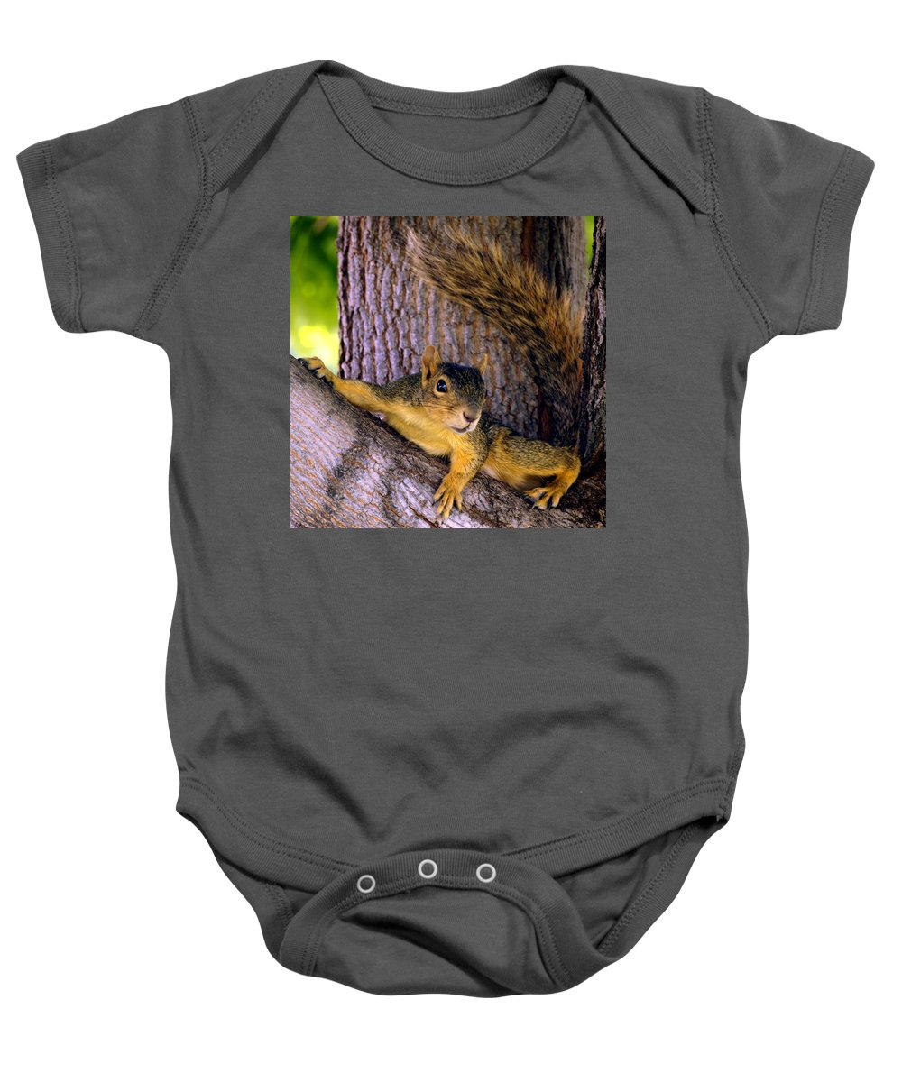 Nature Baby Onesie featuring the photograph Cute Fuzzy Squirrel In Tree Near Garden by Amy McDaniel