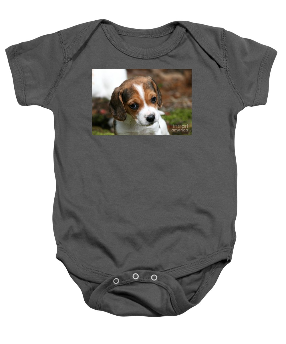Puppy Baby Onesie featuring the photograph Scout by Neal Eslinger