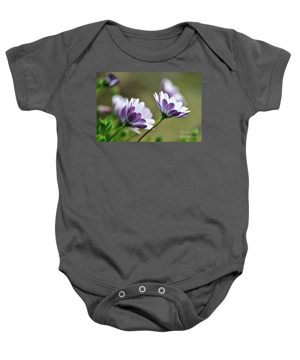 Photography Baby Onesie featuring the photograph Daisies Seeking The Sunlight by Kaye Menner
