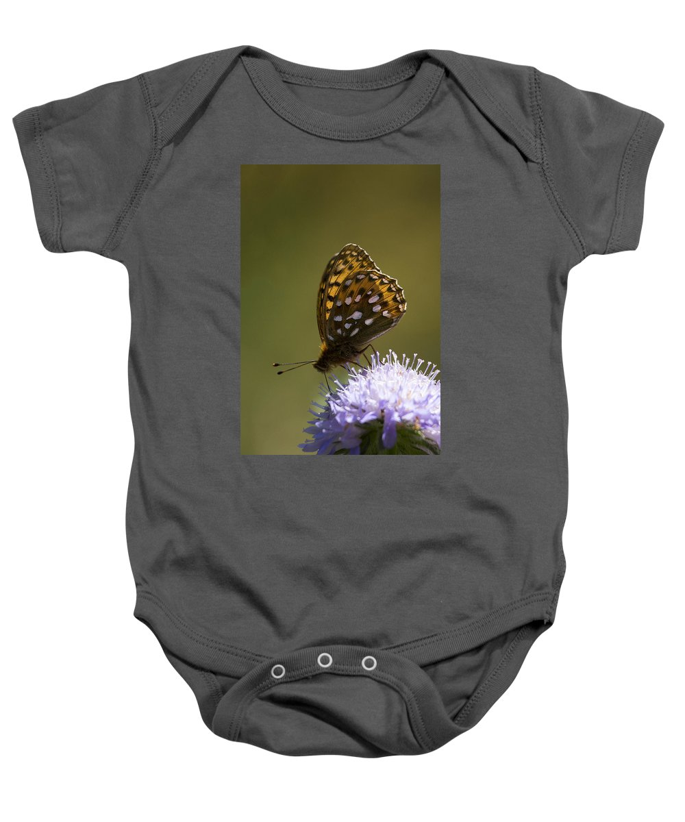 Lepidoptera Baby Onesie featuring the photograph Dark Green Fritillary by Bob Kemp