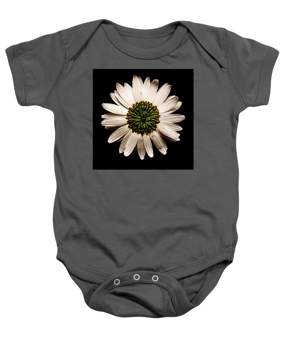 Daisy Baby Onesie featuring the photograph Dark Side Of A Daisy Square by Weston Westmoreland