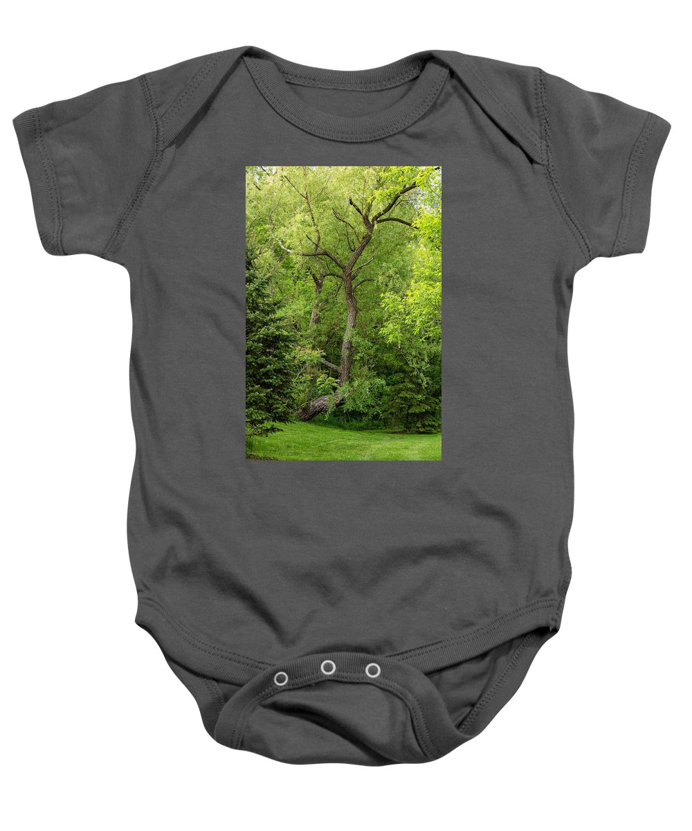 Bolton Baby Onesie featuring the photograph Determination 2 by Steve Harrington