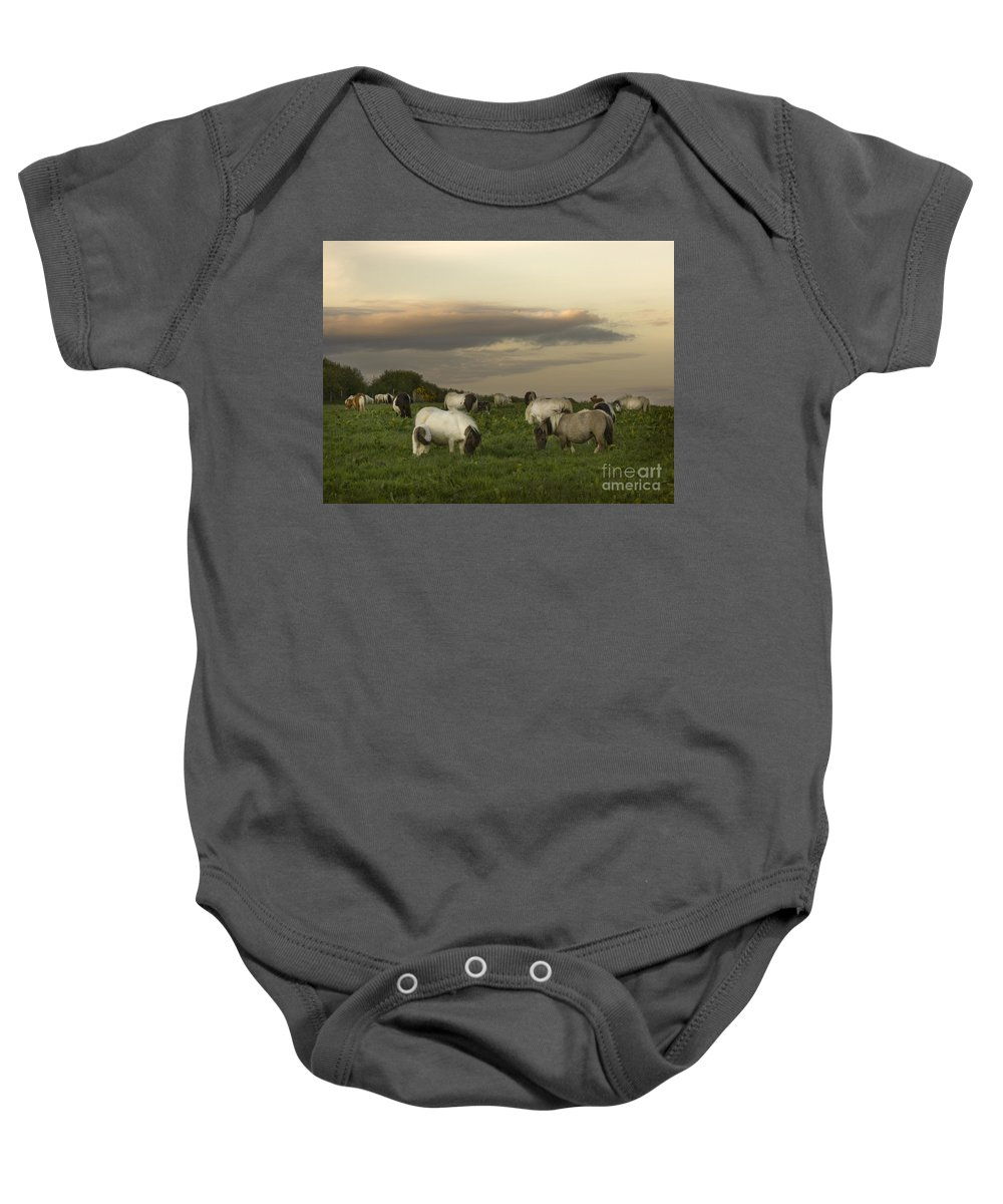Ponies Baby Onesie featuring the photograph Dining Ponies by Angel Tarantella