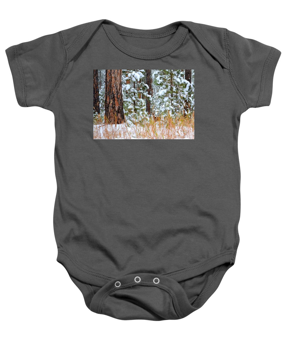 Pine Trees Baby Onesie featuring the photograph Do You See Me by Clarice Lakota