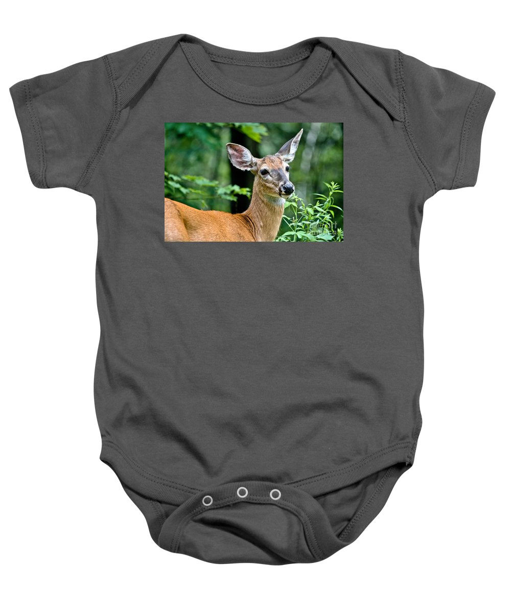 Deer Baby Onesie featuring the photograph Doe Close by Cheryl Baxter