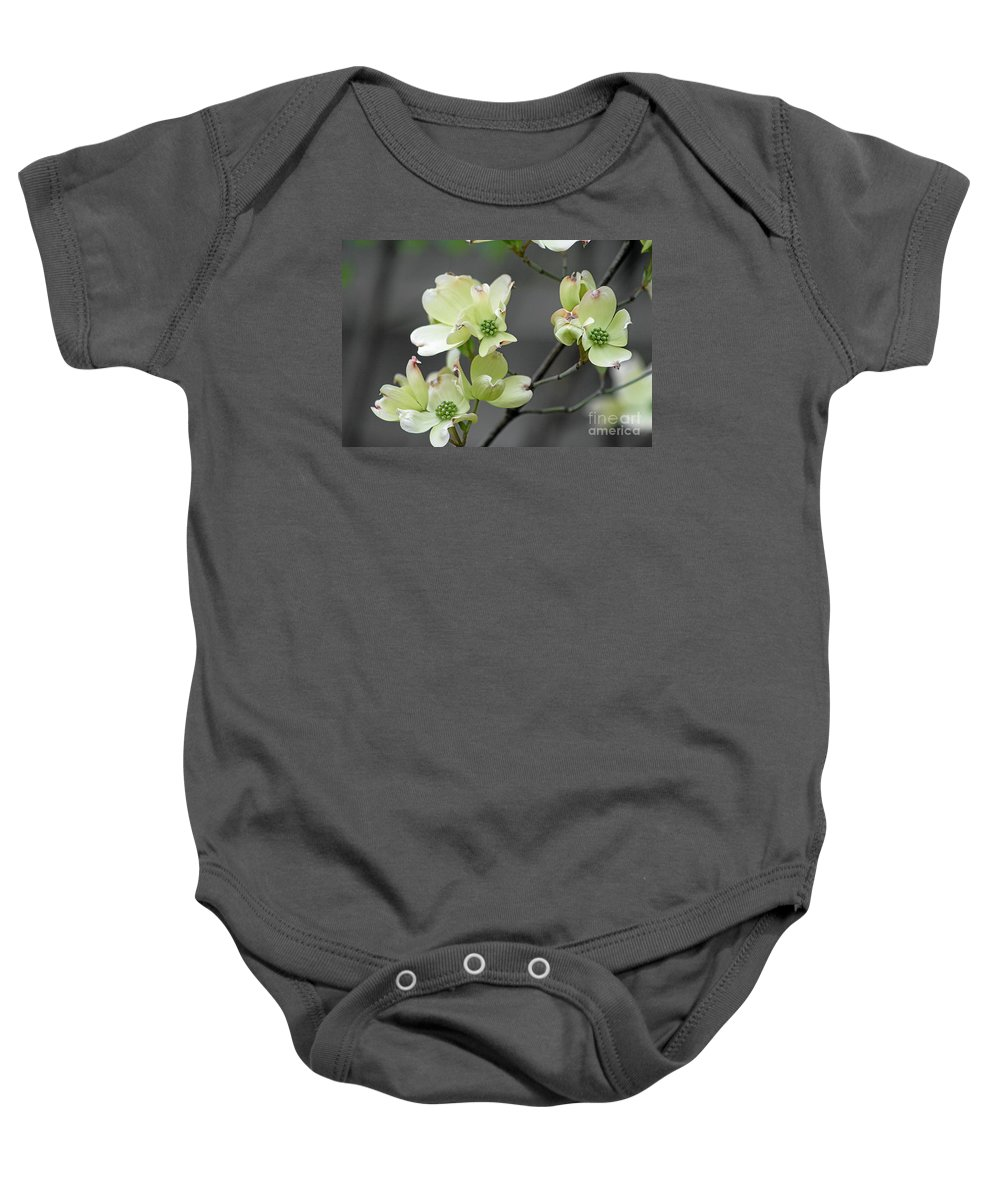 Flowers Baby Onesie featuring the photograph Dogwood In Bloom by Gayle Miller