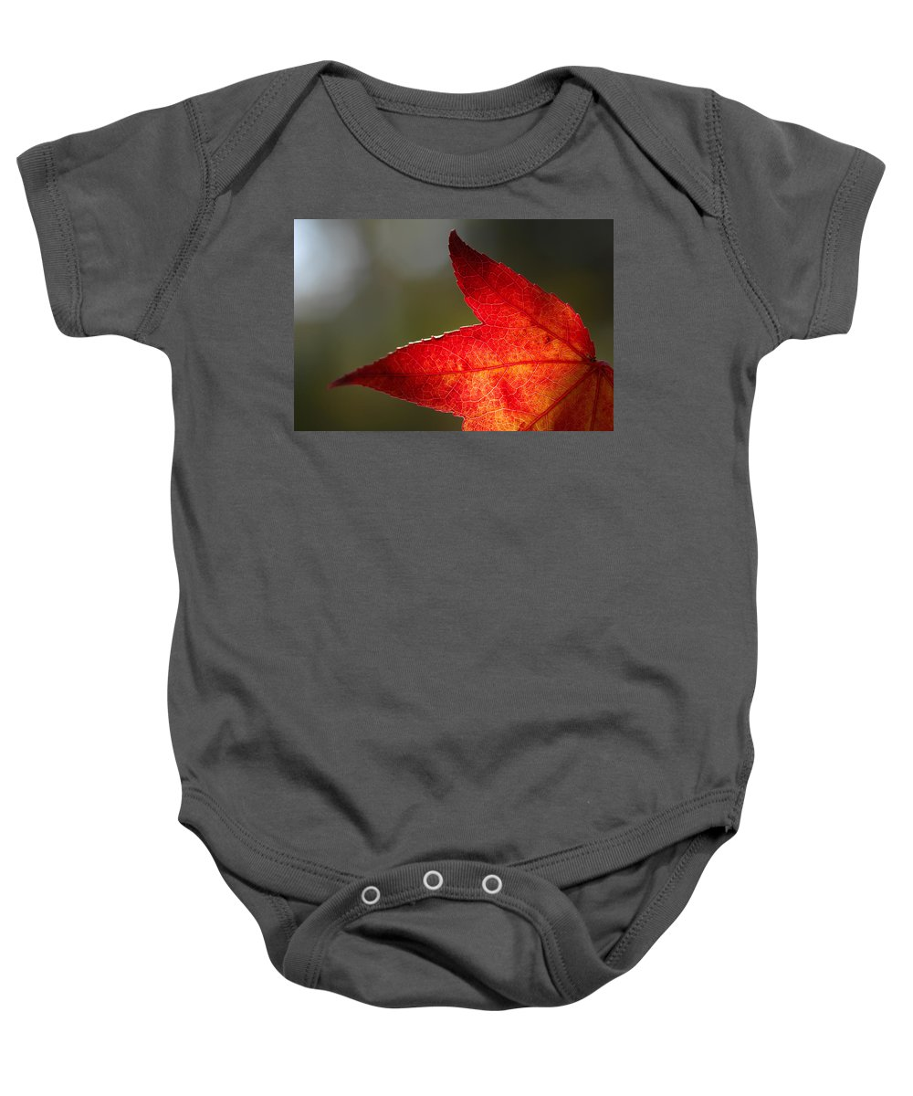 Fall Baby Onesie featuring the photograph Don't Point by Donna Blackhall